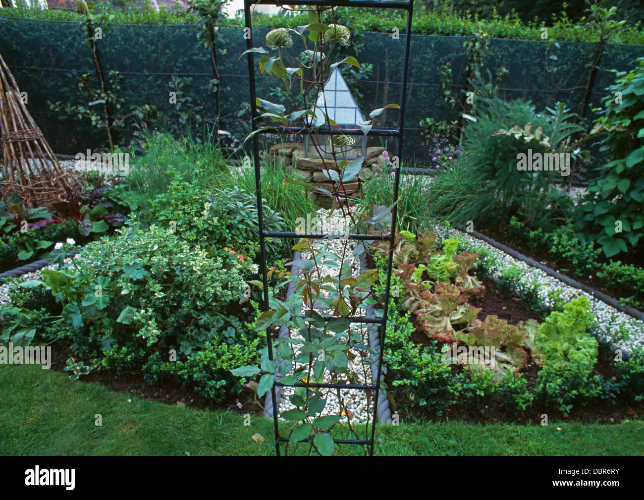 metal arch in well tended vegetable garden with rows of lettuces