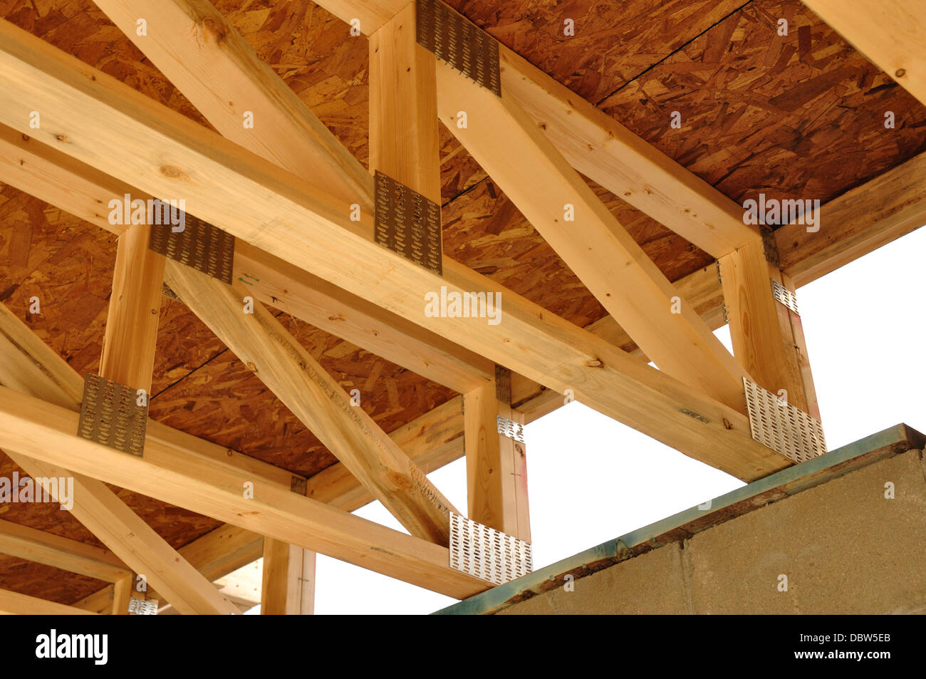 Floor ceiling joists trusses in a new house under for Wood floor joist construction