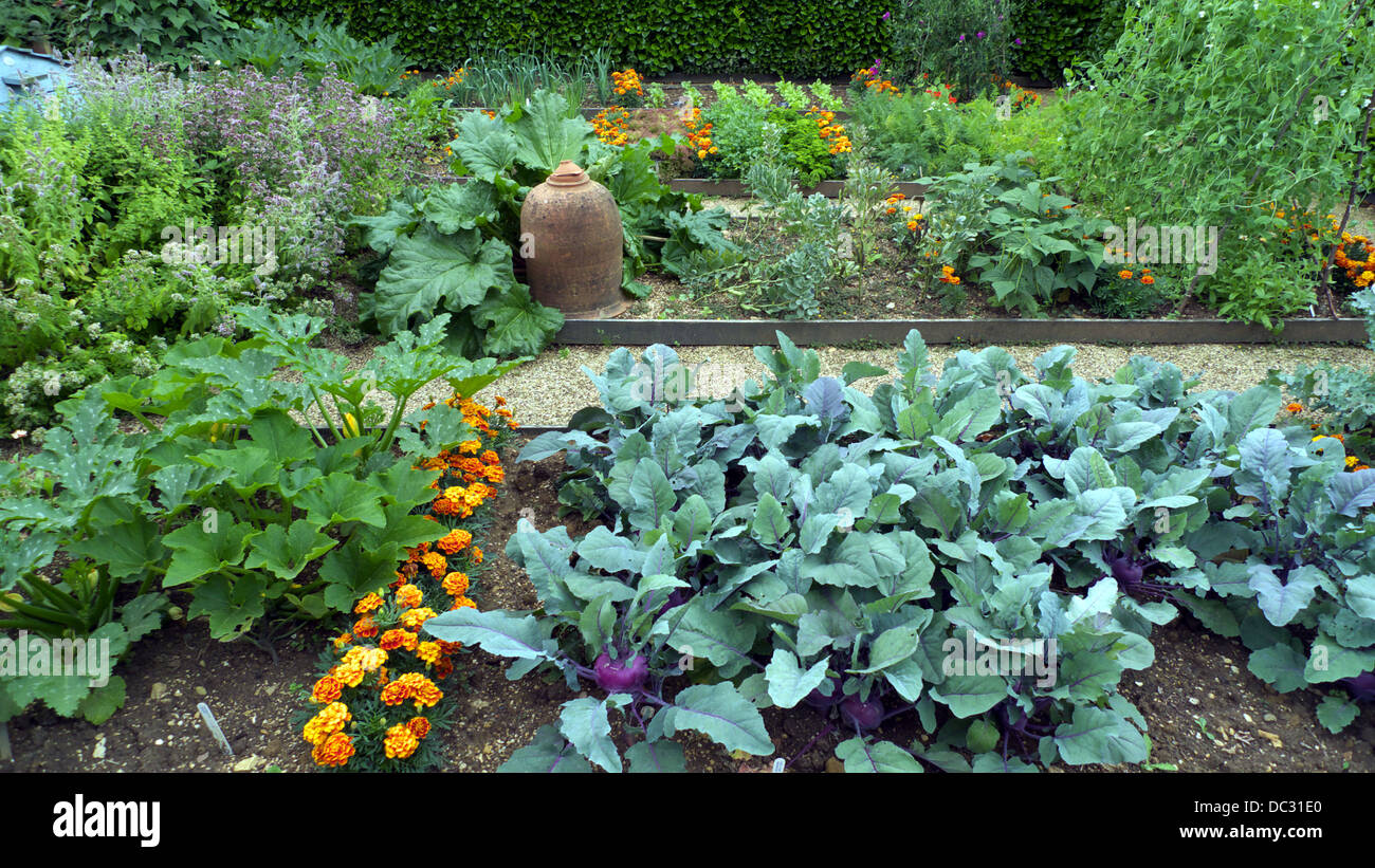 Kitchen Gardens Raised Bed Plots Kitchen Garden With Companion Plants To Deter