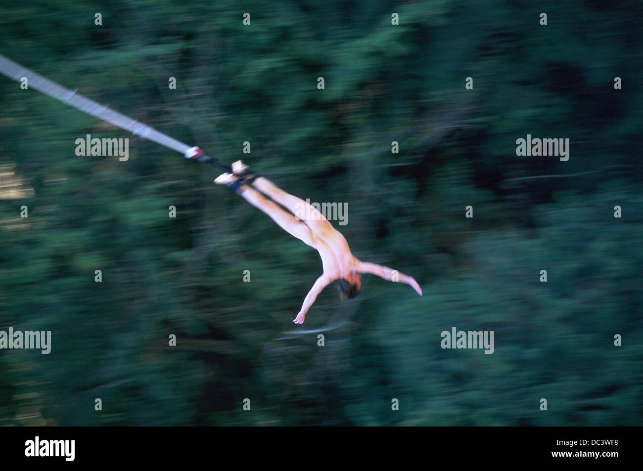 Nude Bungie Jumping 93