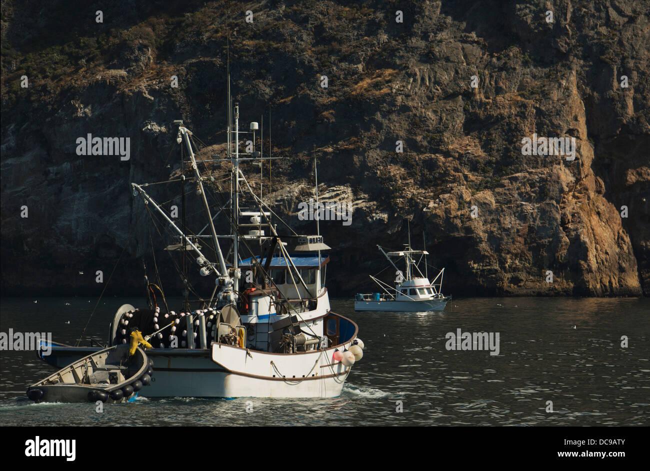 Fishing boats at anchor north shore of santa cruz island for Santa cruz fishing