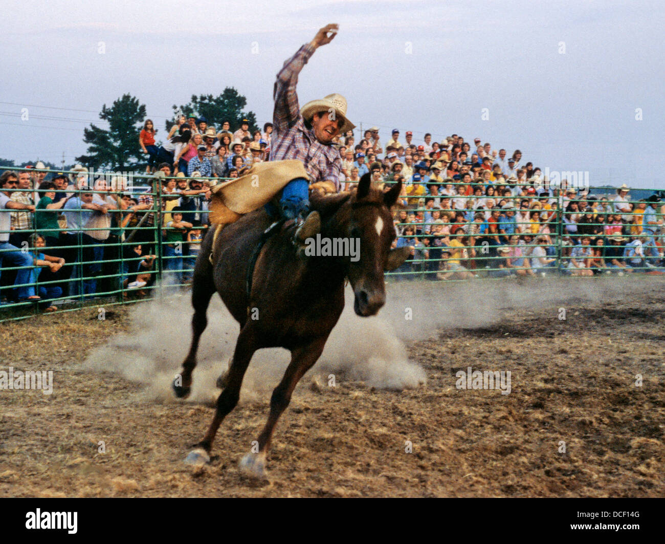 A Rodeo Rider On A Bucking Bronco Horse In Front Of A