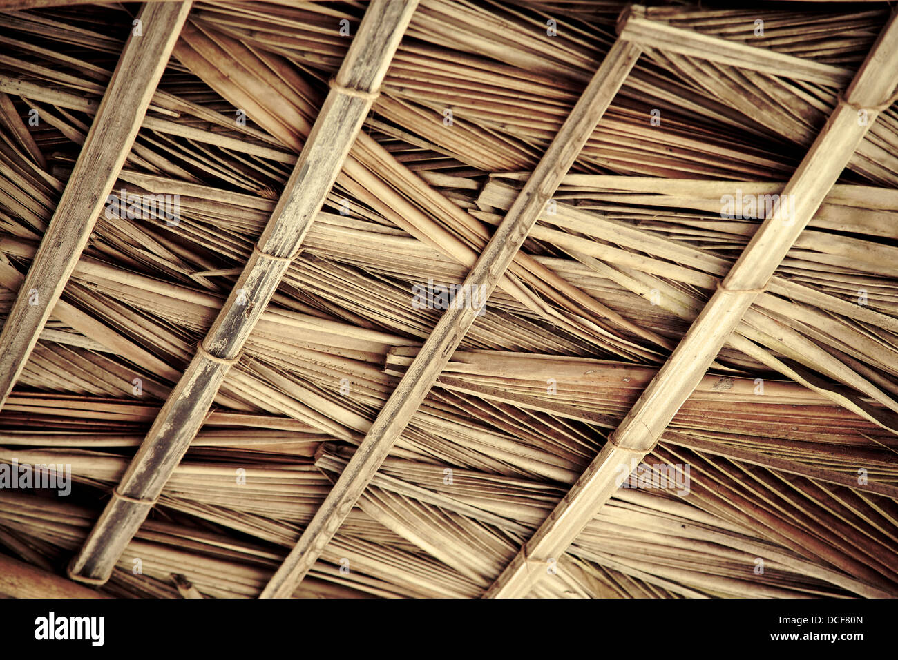 Palm Roof Amp Palm Thatch Thatched Roof Panels Sc 1 St