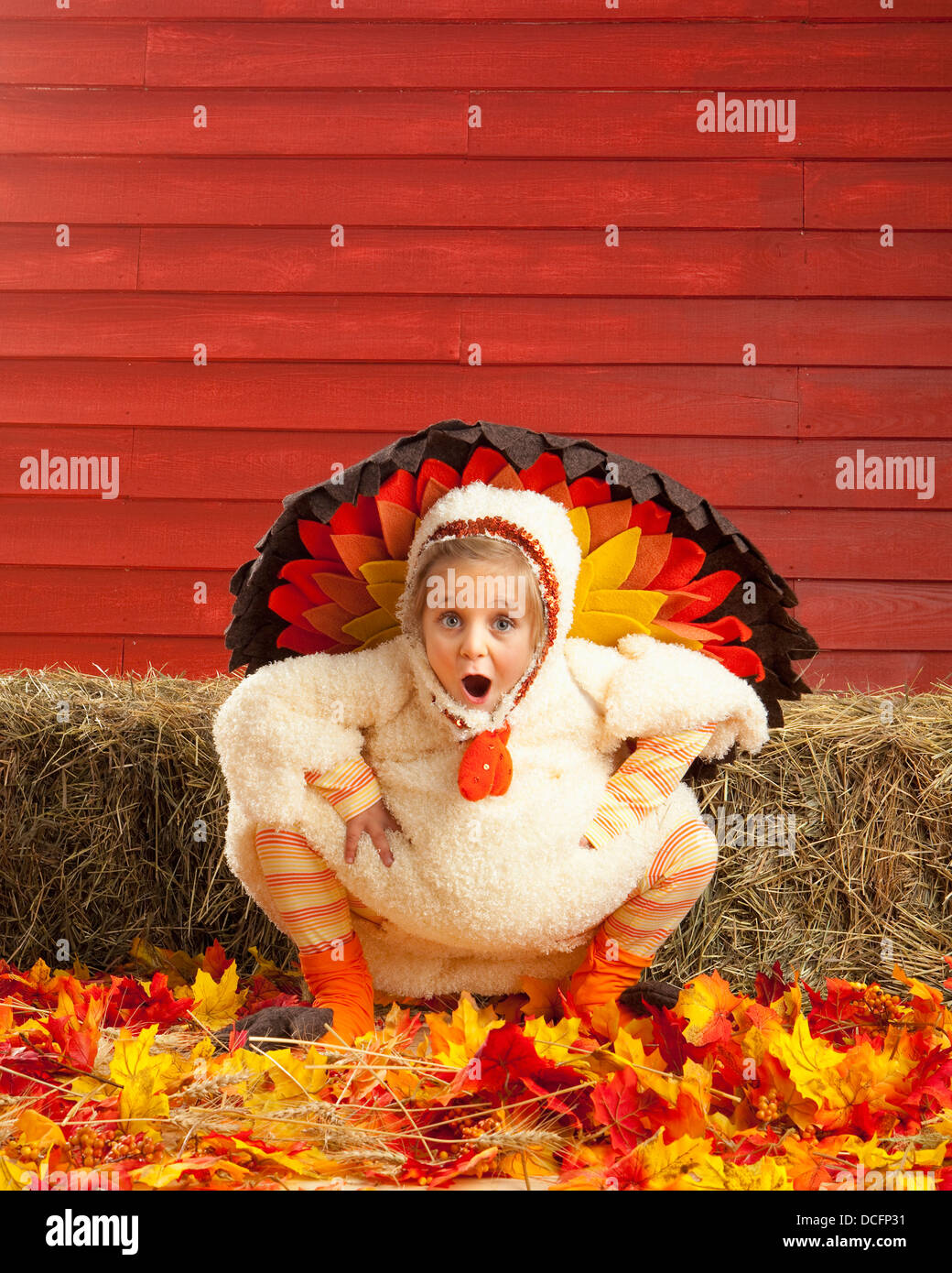 Turkey Costume Stock Photos & Turkey Costume Stock Images - Alamy