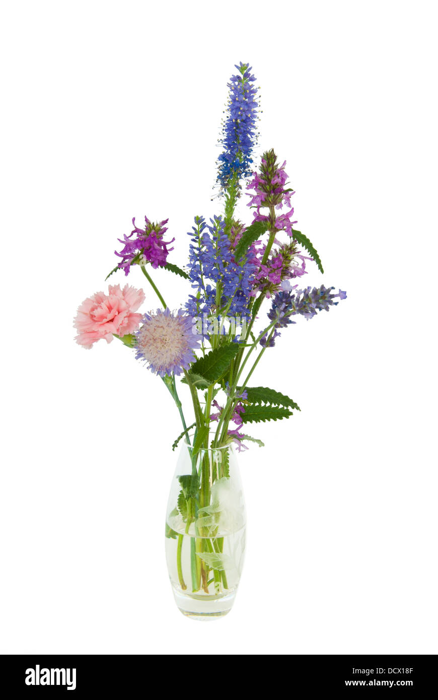 A small glass vase with a simple posy of wild flowers stock photo a small glass vase with a simple posy of wild flowers floridaeventfo Images