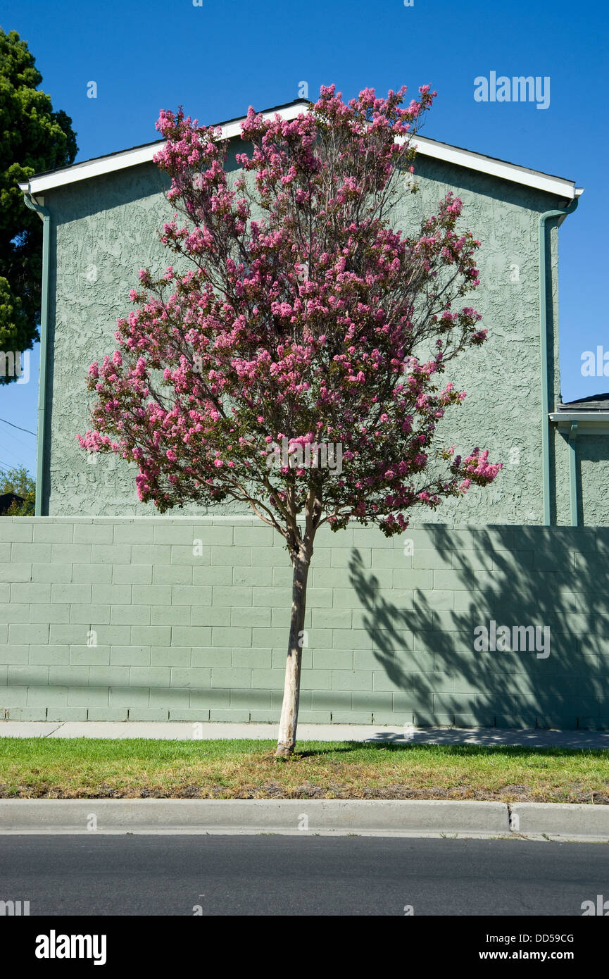 los angeles urbanism and urban landscape essay In part 2 of what with this becomes a three-part review of landscape urbanism and dross essay that prefigured landscape urbanism) los angeles.