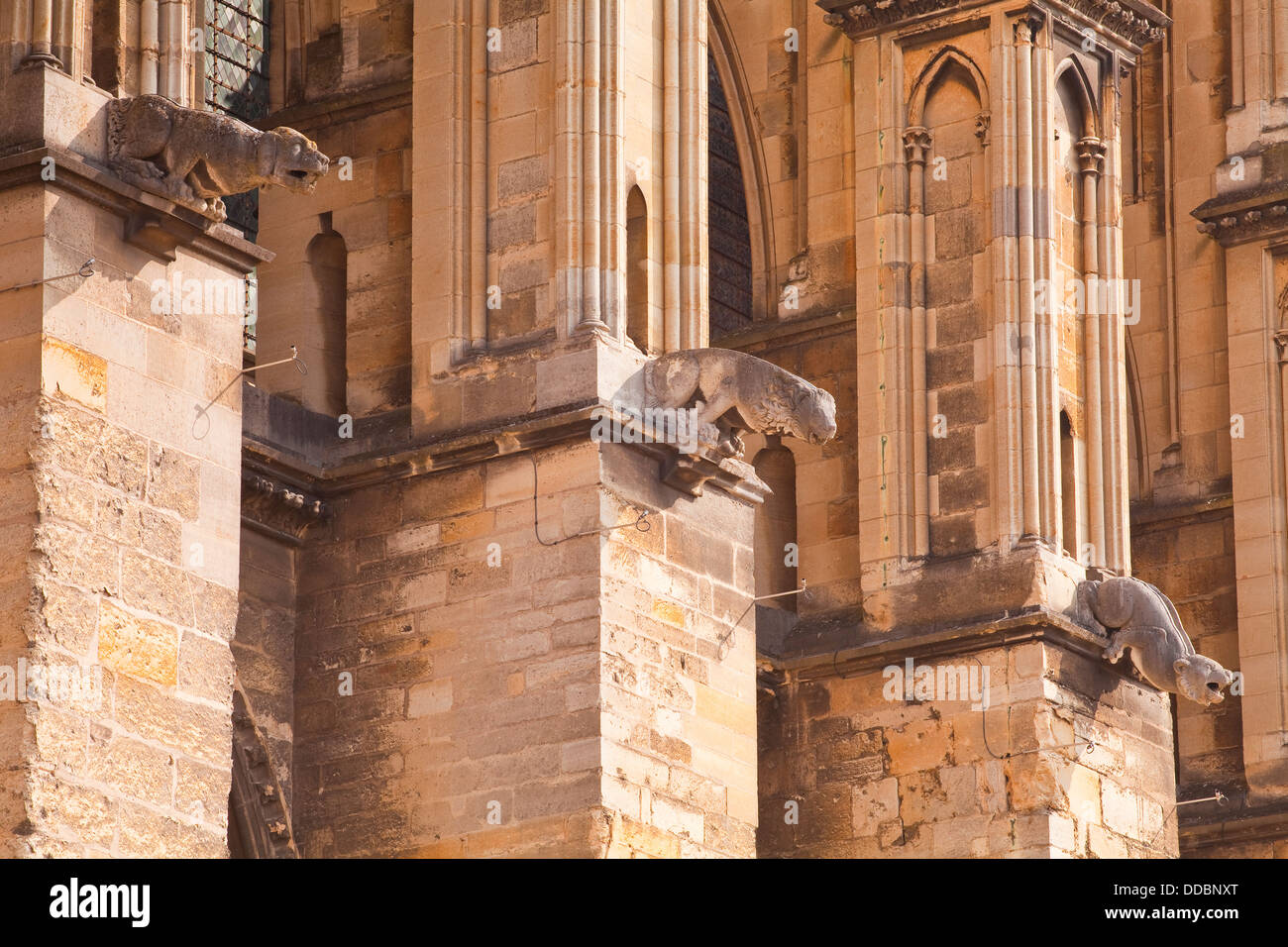 Gargoyles on the exterior of notre dame de reims cathedral for Exterior notre dame