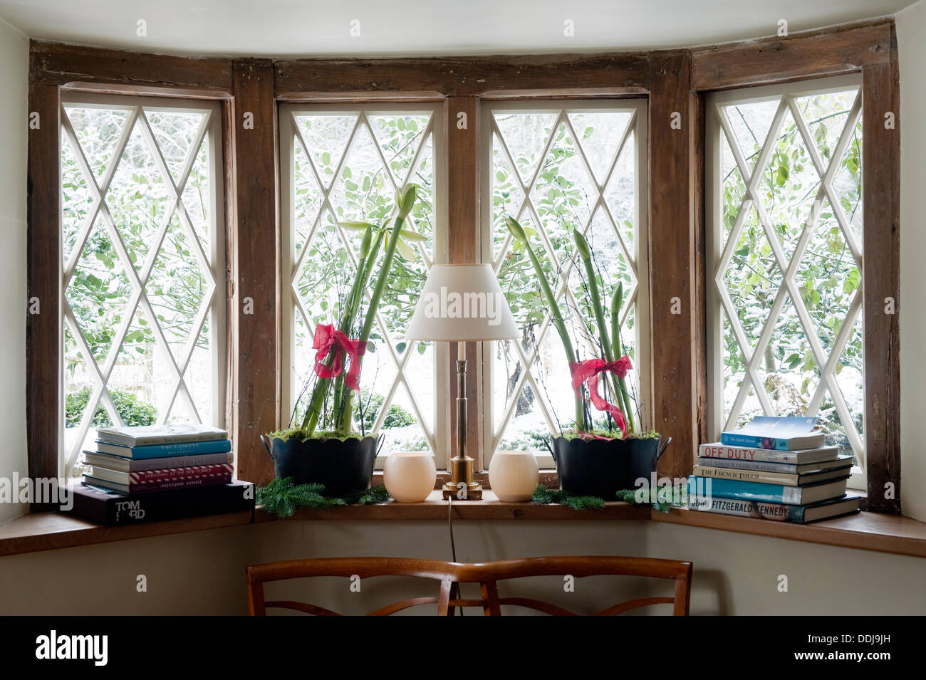 Books Potted Plants Sill Diamond Paned