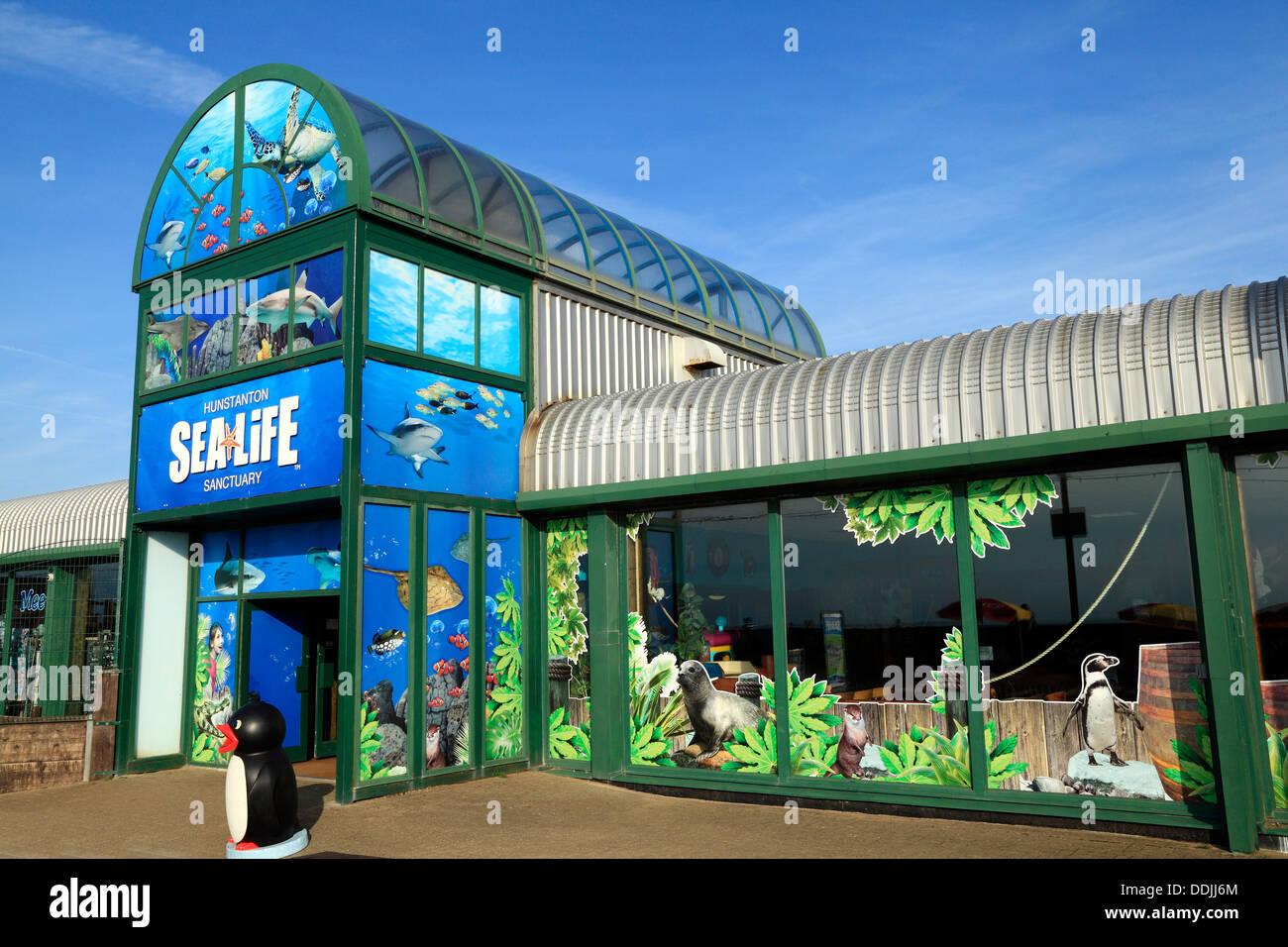 Hunstanton Sea Life Centre Marine Aquarium Norfolk