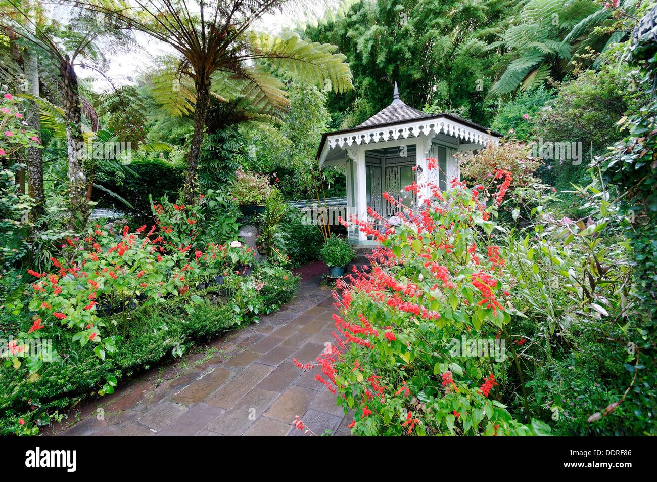 Exceptional Folio´s House Traditional Creole House And Garden, Hell Bourg Village,  Cirque De Salazie, Reunion Island, France