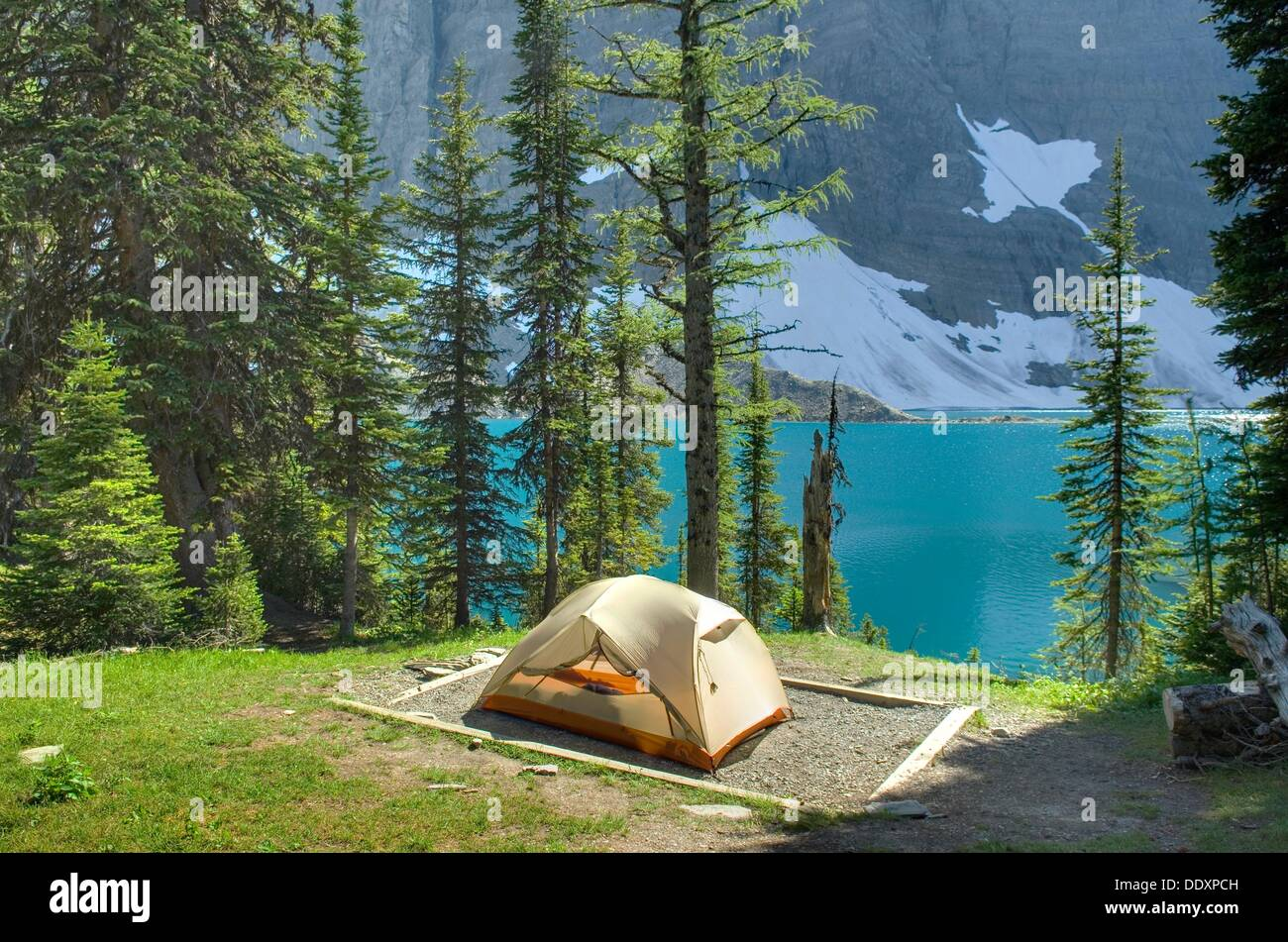 Backcountry campsite at floe lake along the rockwall trail backcountry campsite at floe lake along the rockwall trail kootenay national park british columbia canada sciox Image collections