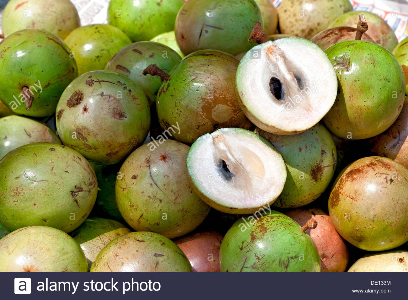 Star Apple or Kaymito. It's fruit season in Cebu. Come