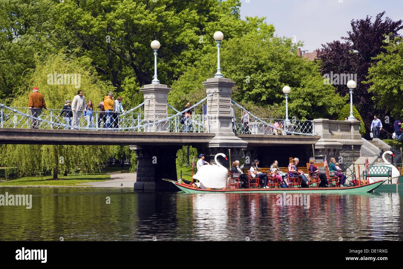 Swan Boats In Boston Common Park Boston Massachusetts Usa Stock Photo Royalty Free Image