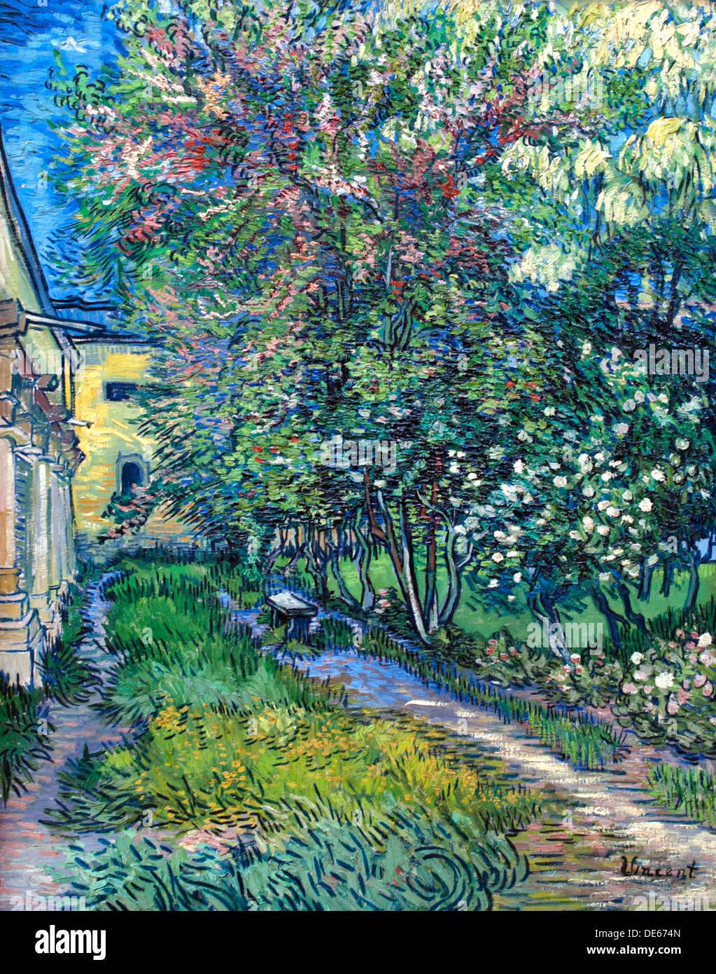 The Garden Of The Asylum 1889 Saint Remy Vincent Van Gogh 1853   1890 Dutch  Netherlands