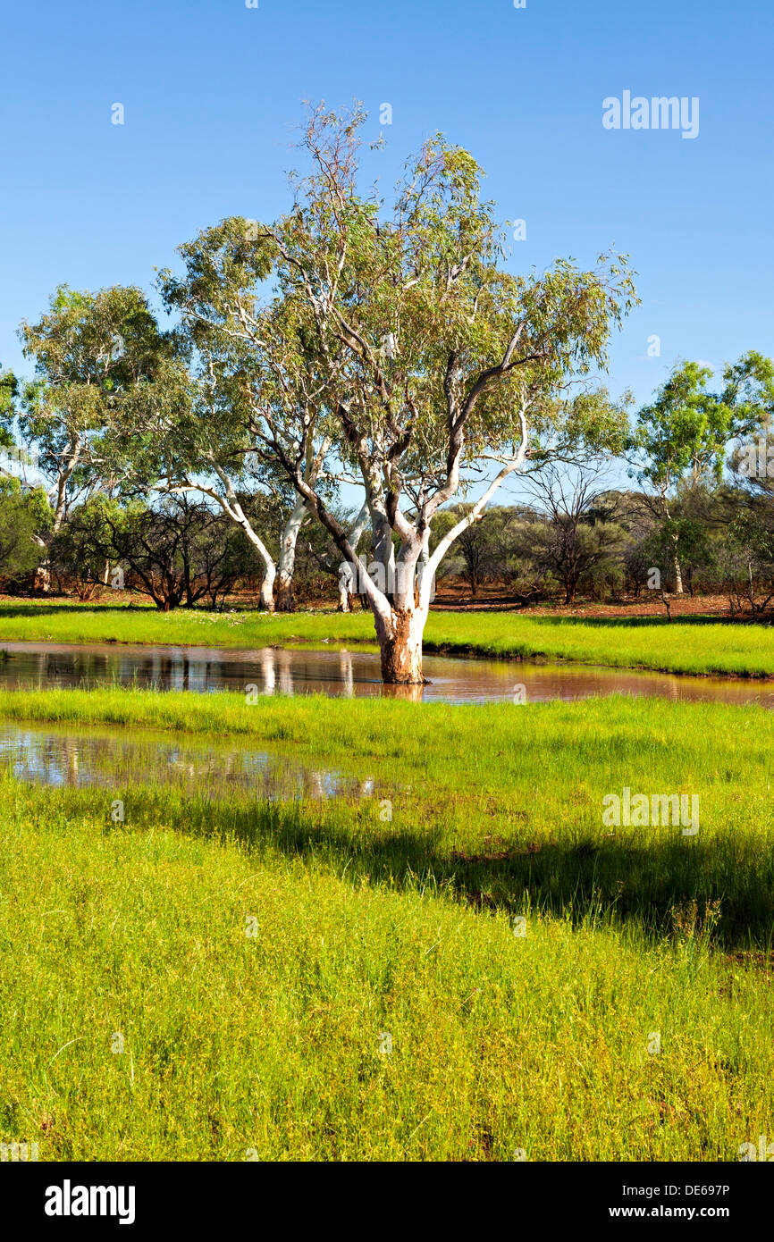 Water covered landscape after heavy rain pilbara for Landscapers adelaide western suburbs