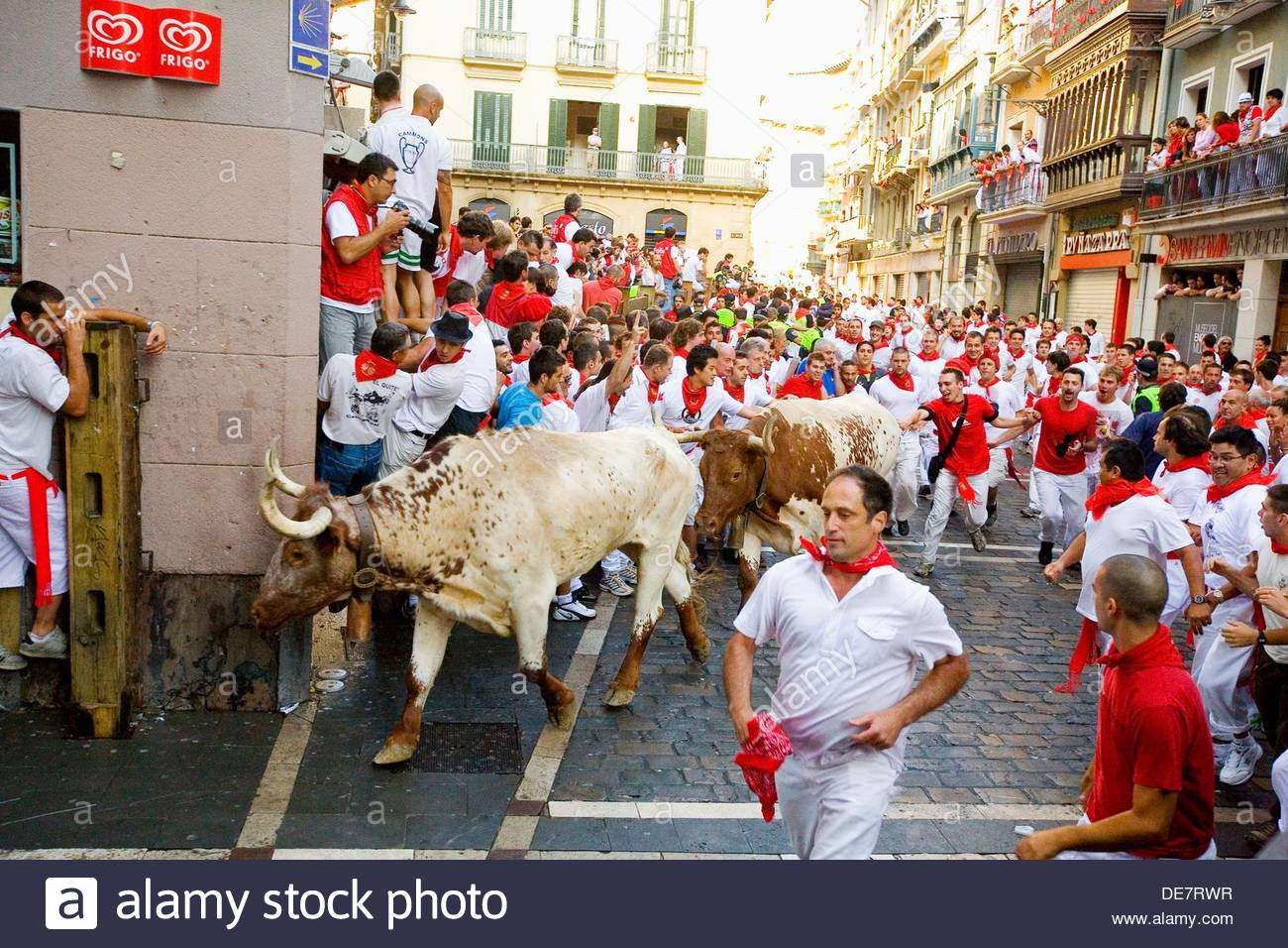 Encierro, the running of the bulls, Fiesta de San Fermin, Festival of Stock P...