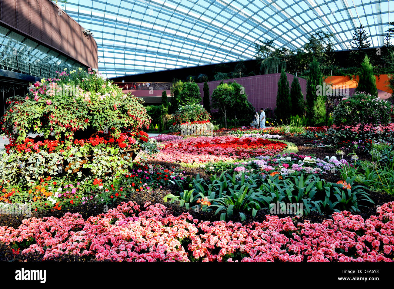 singapore tourist attractions flower dome at gardens by the bay - Garden By The Bay Flower