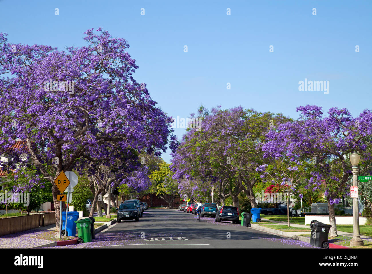 southern home mobile homes html with Stock Photo Jacaranda Trees Blooming Along Street In Culver City Los Angeles California 60646144 on Raw Video Fire In Santa Clarita Los Angeles 309105261 furthermore Stock Photo Traditional African Village Near Victoria Falls Zimbabwe Africa Aerial 57807560 likewise 1979 Robinhood Sportsman Rv Motorhome Dodge F40 24565721 in addition 07hours besides 29iht Remumbai29.