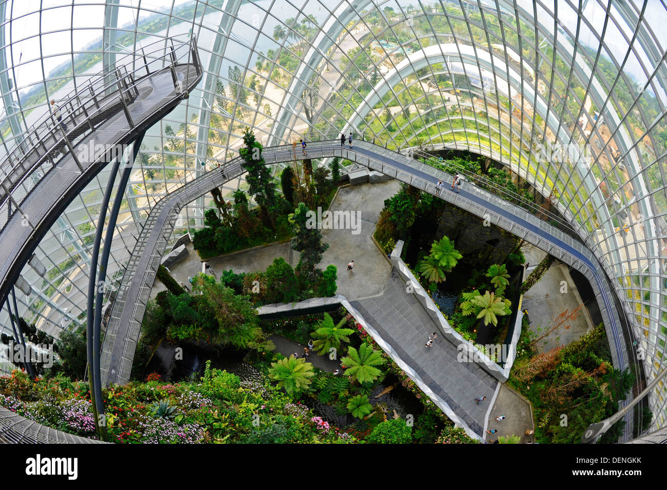The Cloud Forest, a large indoor greenhouse set in the grounds of ...