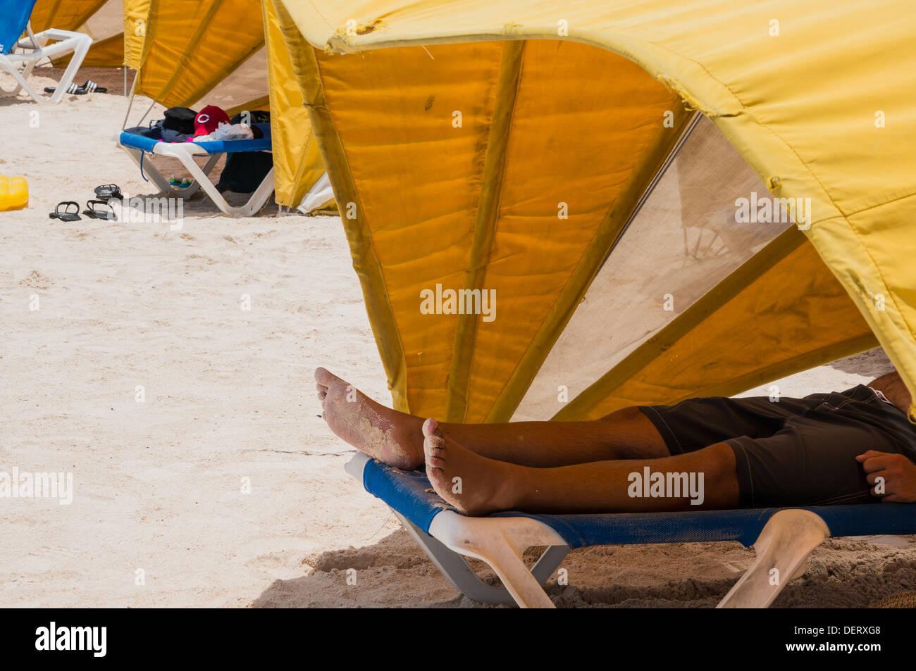 sun tents on Baby Beach in Aruba & sun tents on Baby Beach in Aruba Stock Photo Royalty Free Image ...