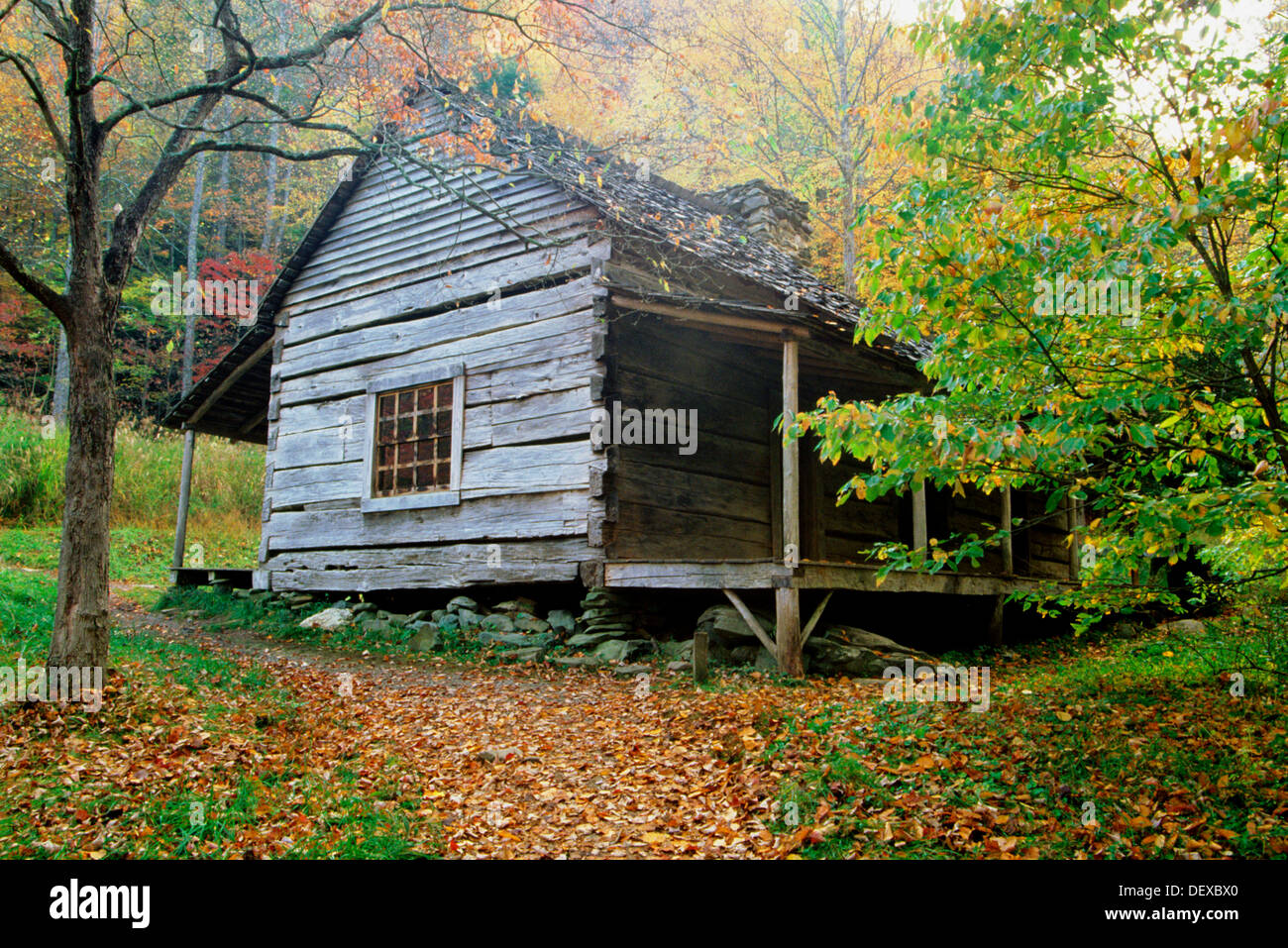 Etonnant ´Bud´ Ogle Cabin In Fall. Great Smoky Mountains National Park. Tennessee.  USA