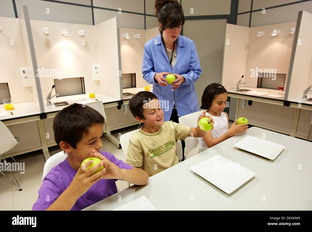Children in apple tasting session tutored by a sensory analysis ...