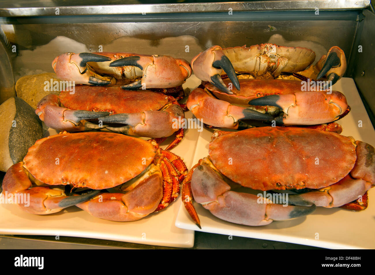 Freshwater fish england - Crab House Cafe Wyke Regis Portland Dorset Uk A Seafood Restaurant On