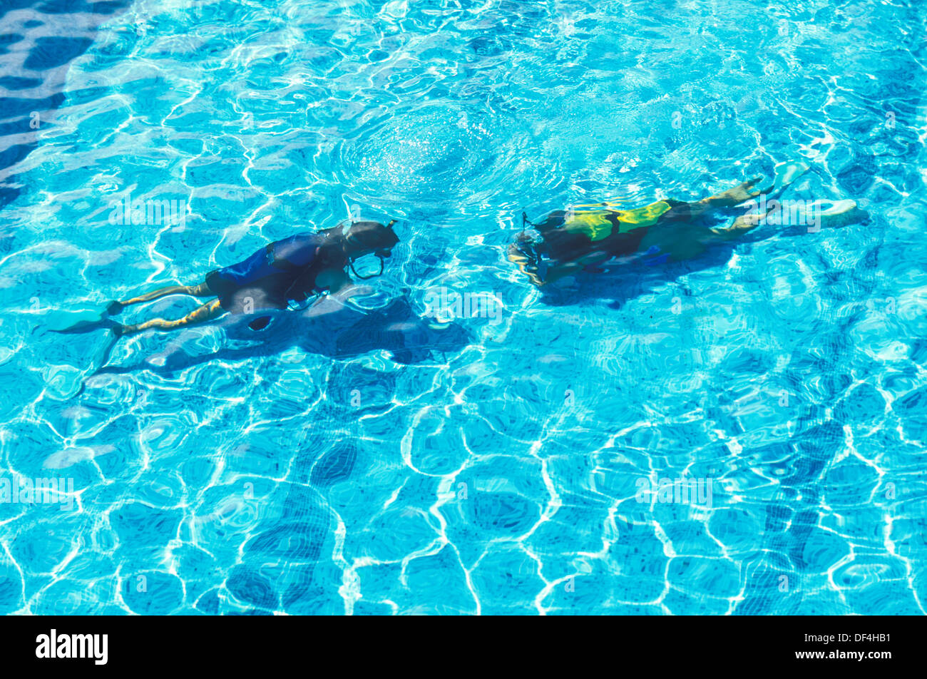 Scuba Divers In Swimming Pool Training Course Yellow Tank Stock Photo Royalty Free Image