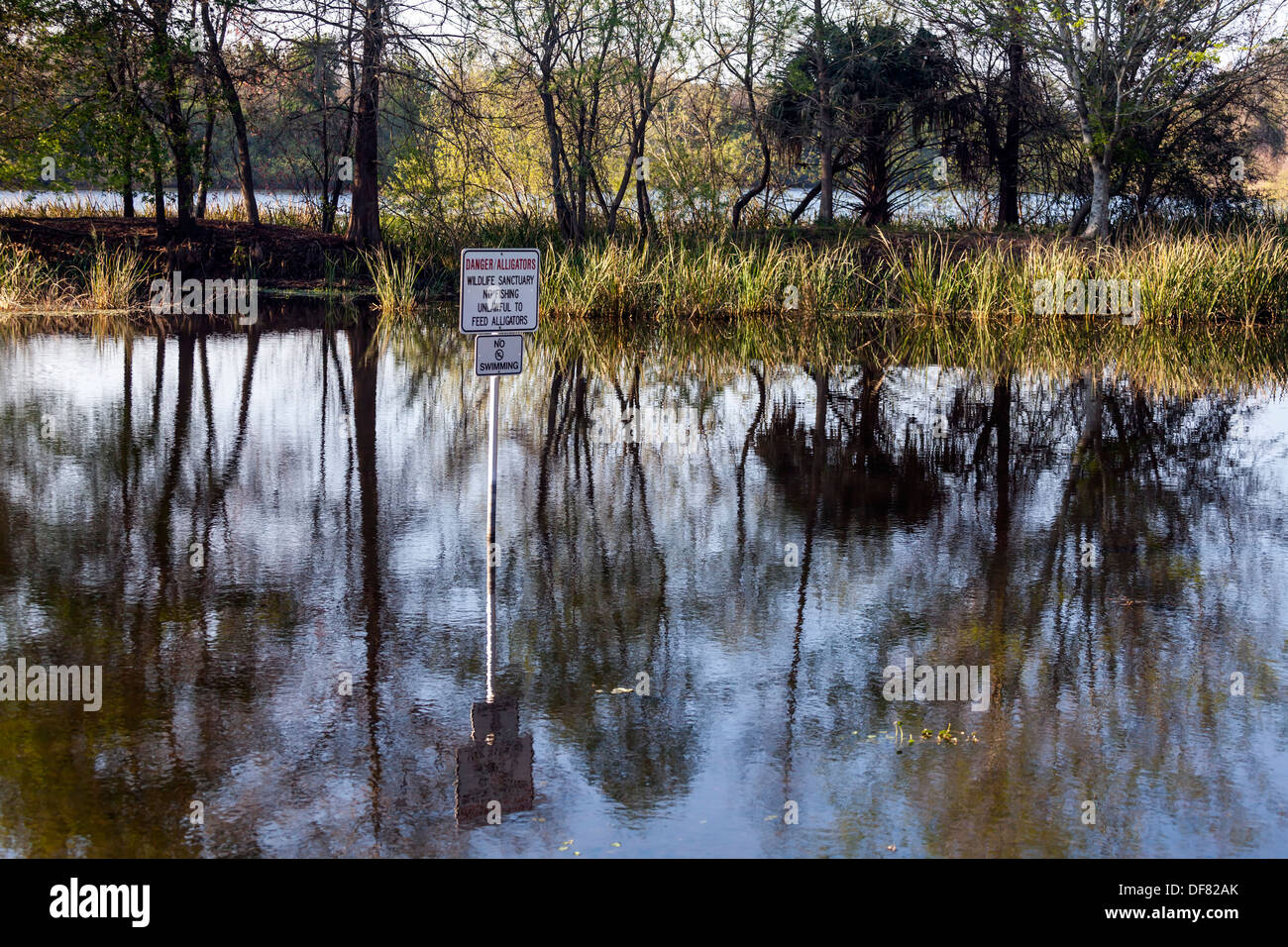 Lake alice wetland preserve warning sign danger for Fishing in gainesville fl