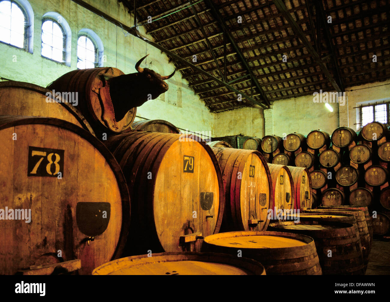 Wine casks torres wineries villafranca del pened s barcelona spain stock photo royalty free - Bodegas torres vilafranca ...