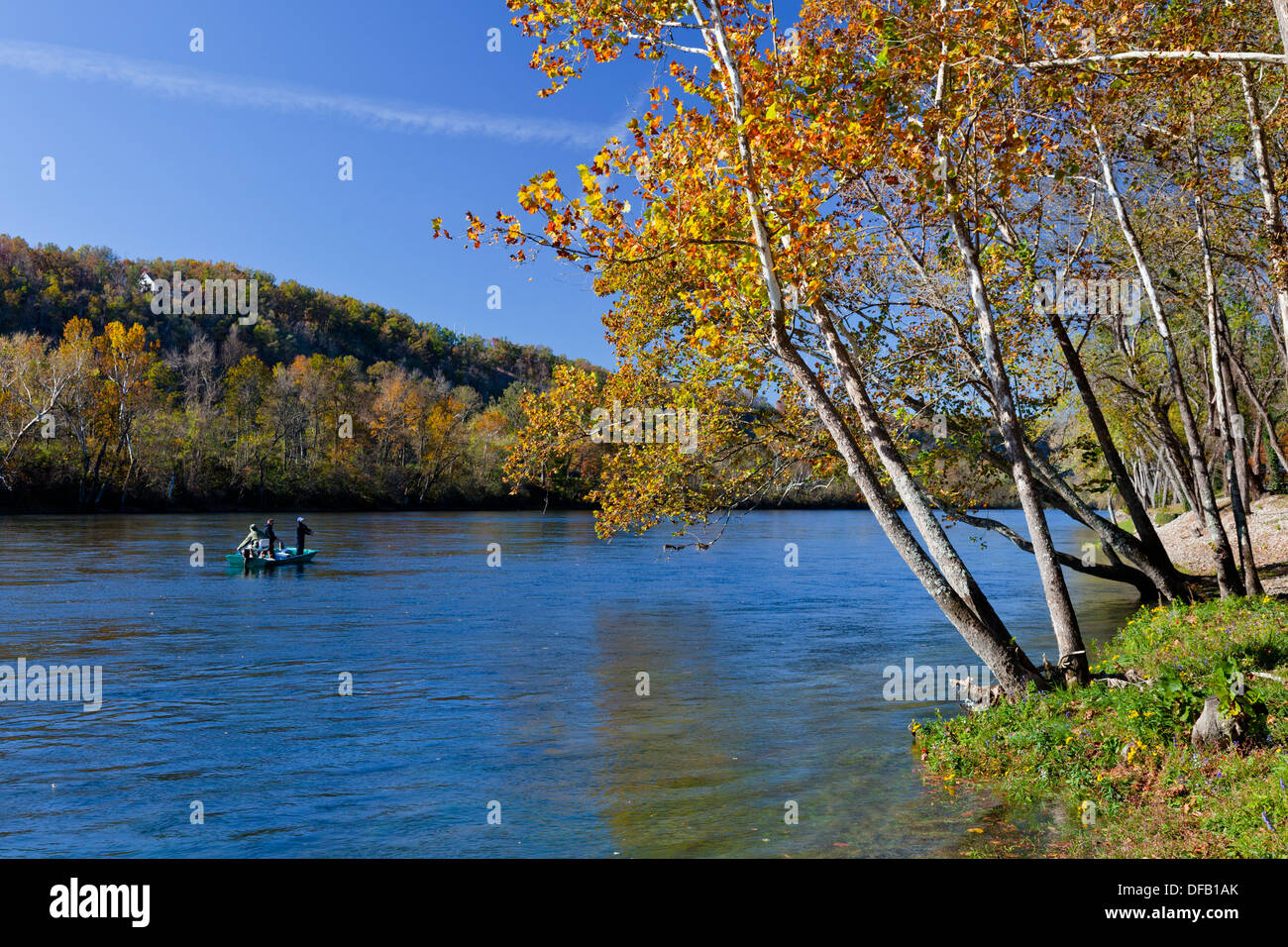 Fall foliage along the white river near the gaston s for Fishing resorts in arkansas