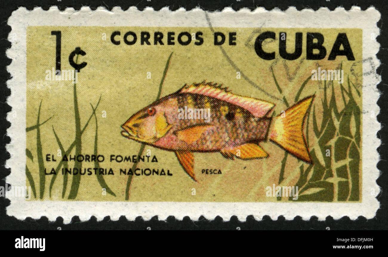 Cuba post mark stamp fauna fish stock photo royalty for Fish symboled stamp