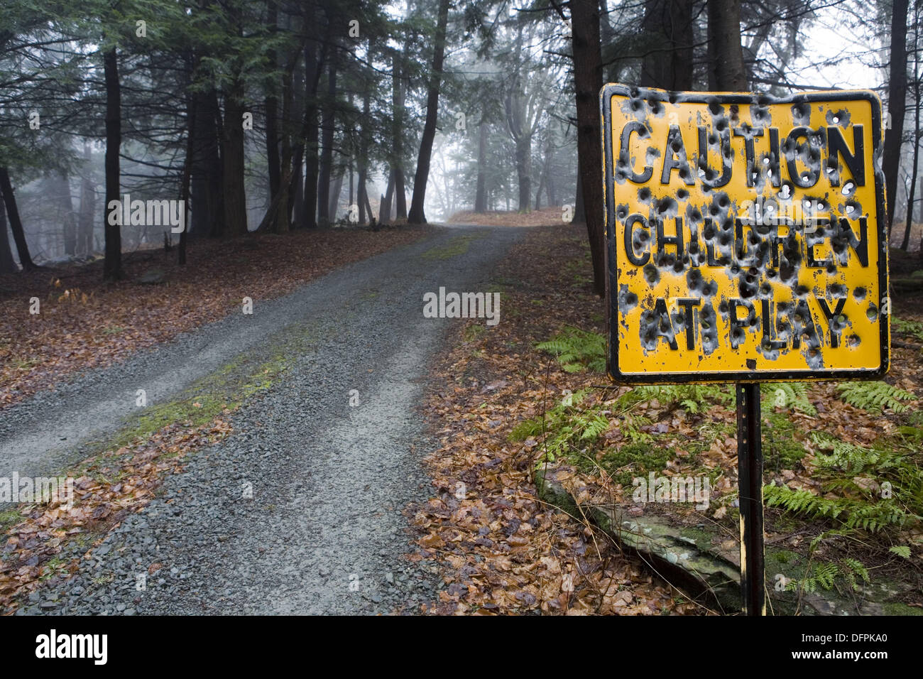 [Image: country-road-sign-shot-up-with-bullet-holes-DFPKA0.jpg]