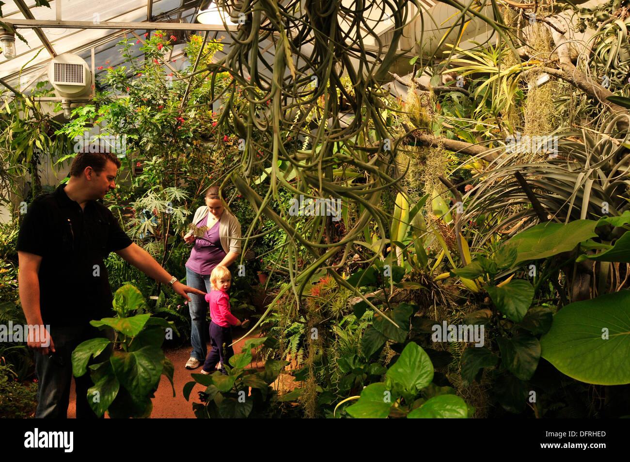 Merveilleux Visitors Enjoy Butterfly Magic At The Tucson Botanical Gardens, Tucson,  Arizona, USA