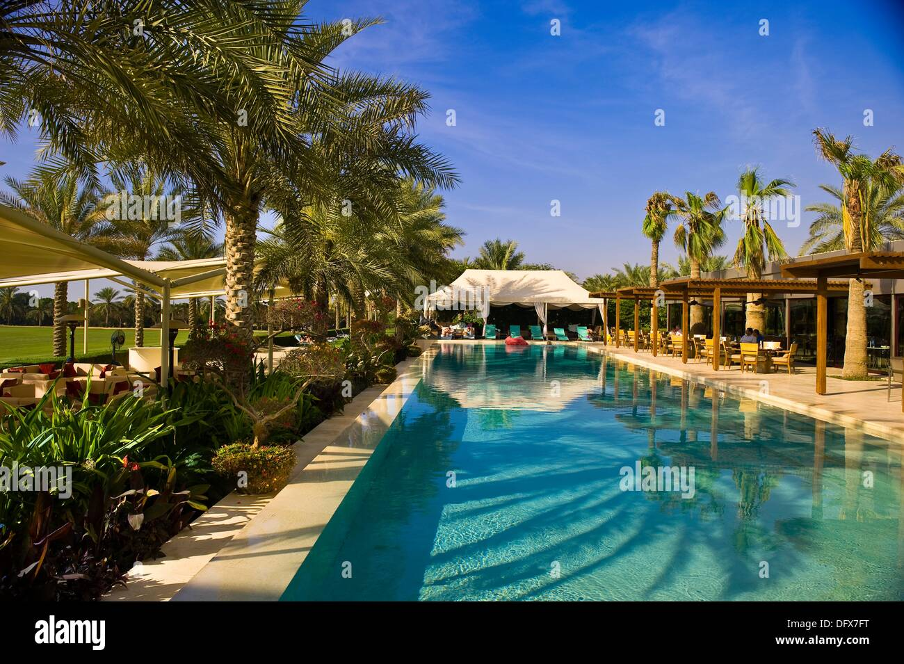 Swimming Pool Desert Palm Hotel Dubai United Arab Emirates Stock Photo Royalty Free Image