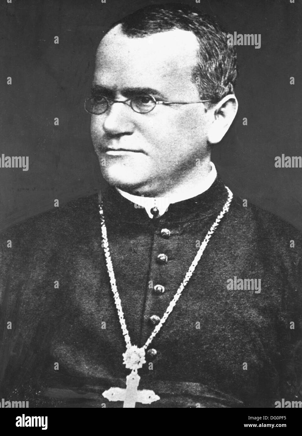 the life of gregor mendel On biographycom, learn more about gregor mendel, the 19th century  synopsis early life experiments and theories later life and legacy.