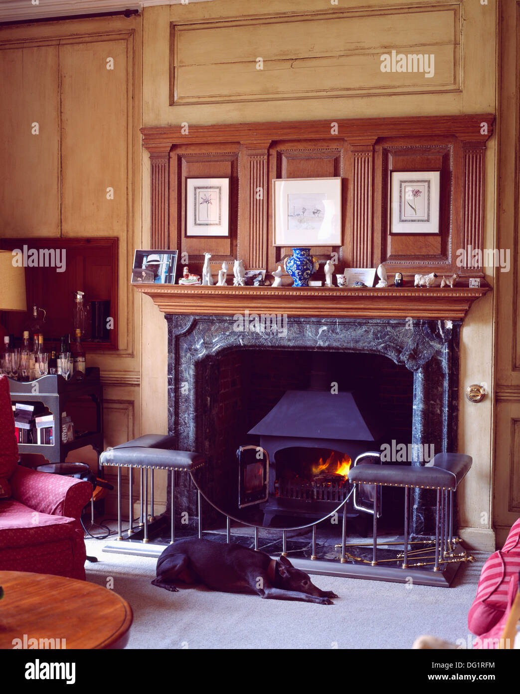 dog lying in front of wood burning stove in marble fireplace in