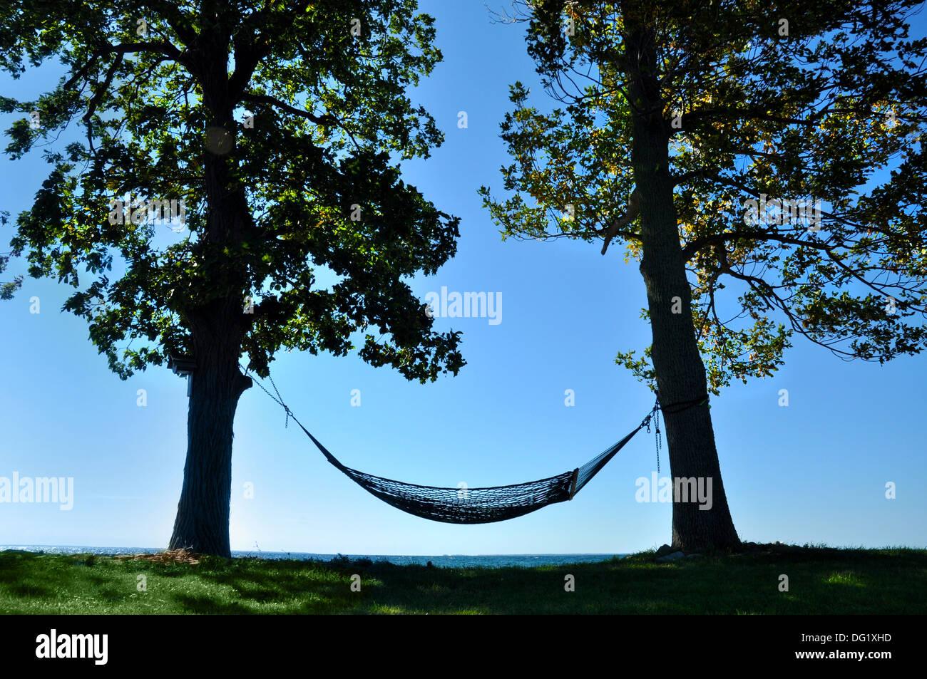 hammock between two trees on shoreline of lake ontario new york stock photo 61508425 alamy. Black Bedroom Furniture Sets. Home Design Ideas