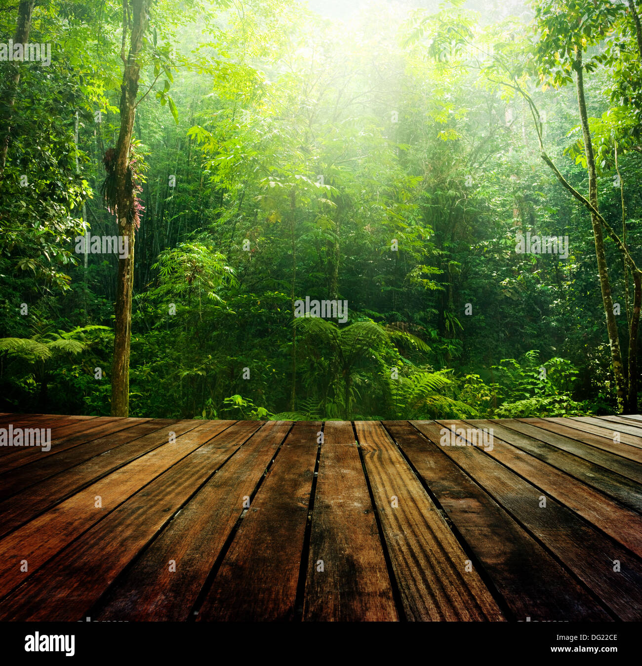 light wood floor perspective. Wooden Floor Perspective And Green Forest With Ray Of Light Wood