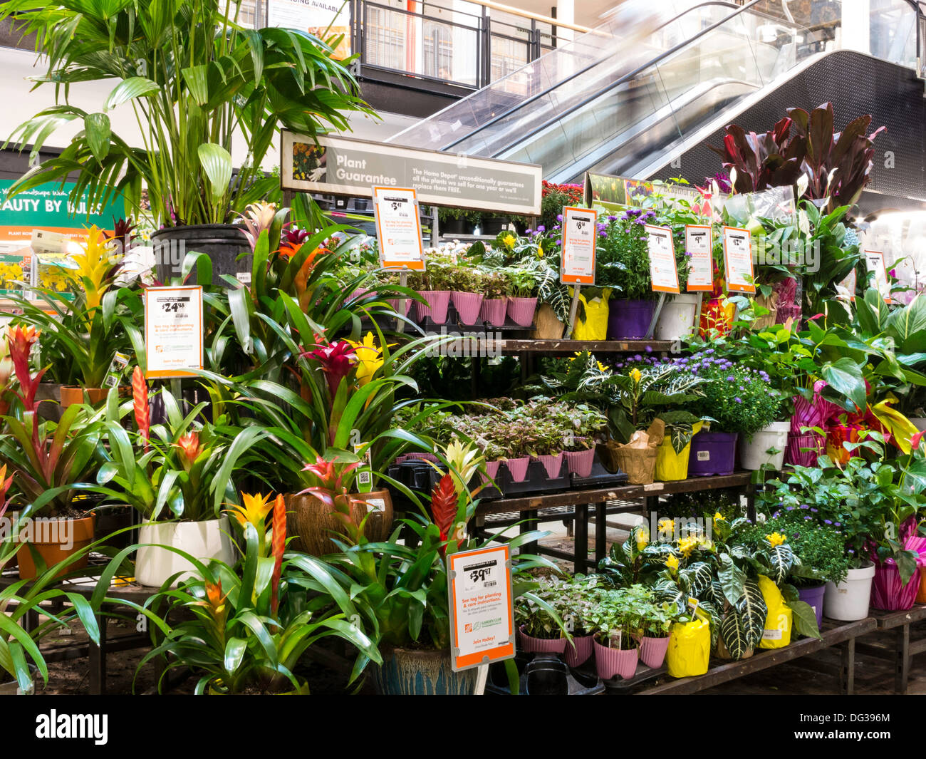 Home depot store garden center display nyc stock photo for Home depot jardineria