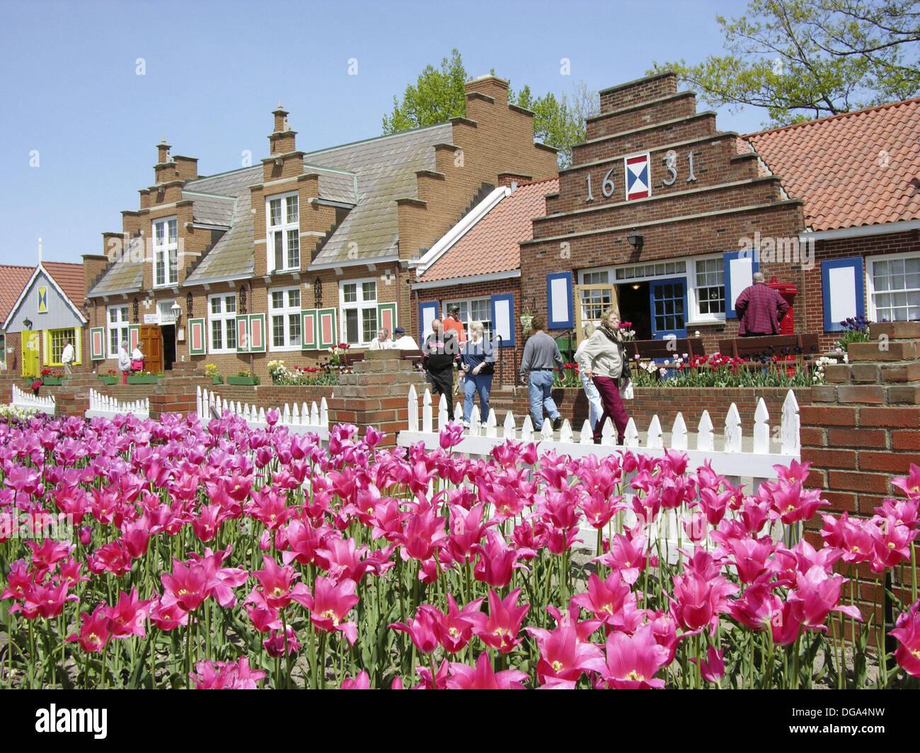Holland Michigan USA Tulip Festival Tulip Flowers And Shops On - Holland tulip festival