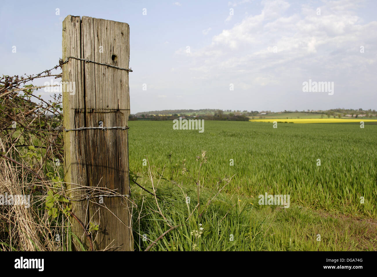 Old wooden fence post in field close up england uk stock photo old wooden fence post in field close up england uk baanklon Image collections
