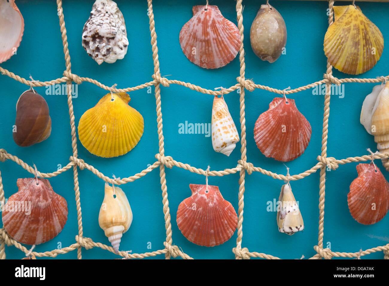 assorted seashells on a fishnet kamari santorini greece