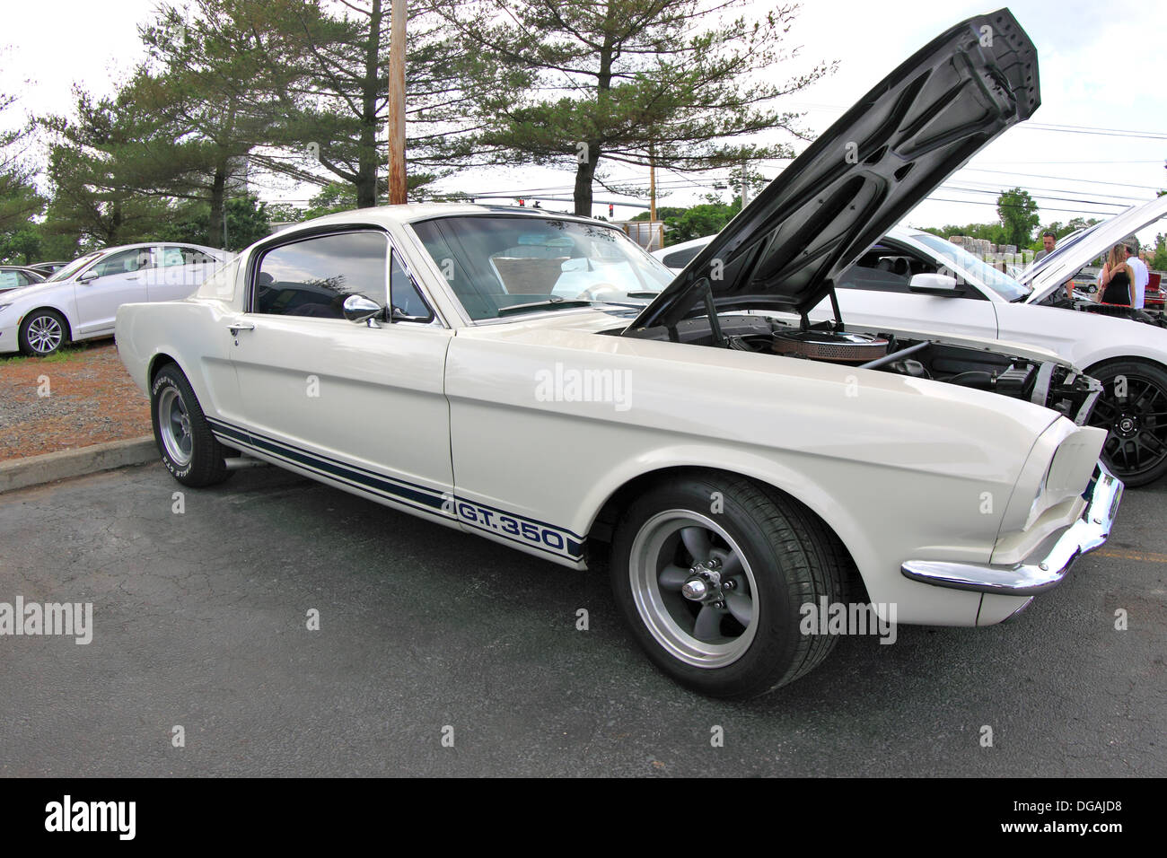 1967 Ford Mustang GT Fastback with 289 V8 high performance engine