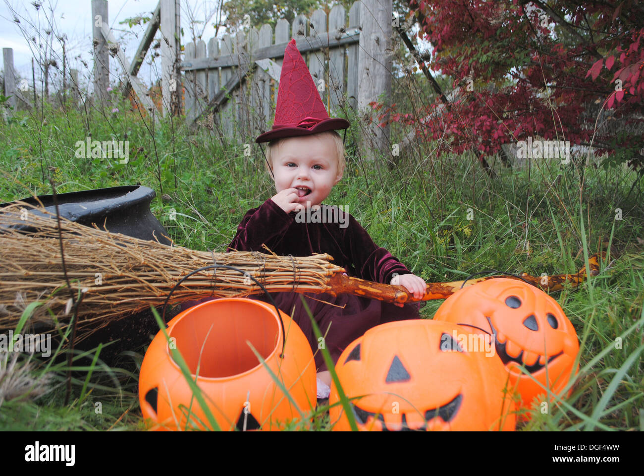 Cute little Halloween baby in a witch costume in a country fall ...