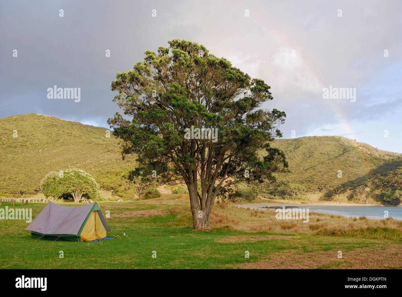 Tent under a Rainbow Tapotupotu Bay Cape Reinga North Island New Zealand & Tent under a Rainbow Tapotupotu Bay Cape Reinga North Island ...