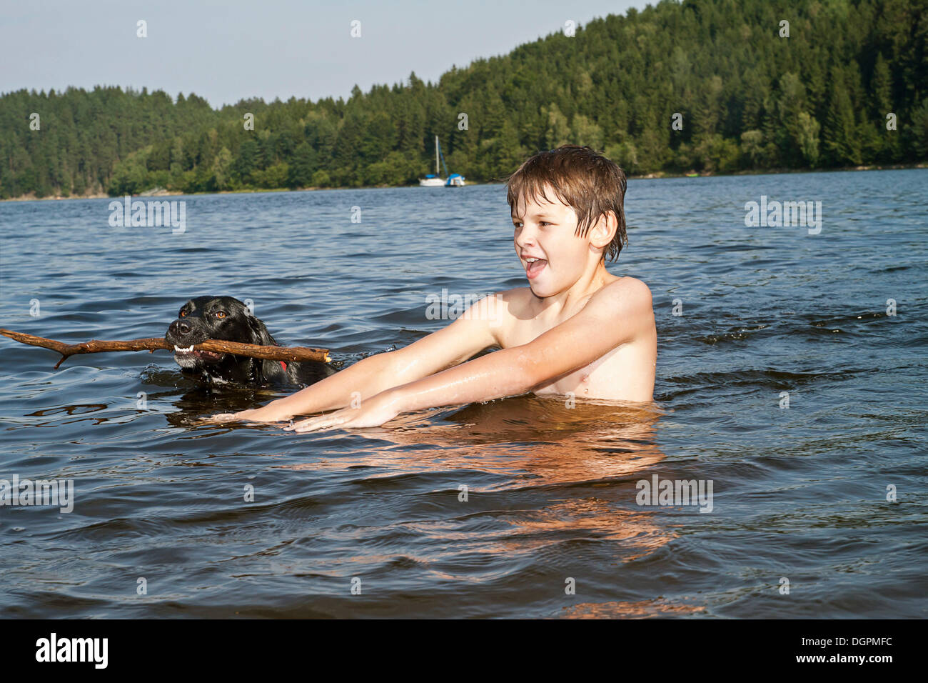 Lake Toys For Boys : Boy playing with his hunting dog in a lake stock photo