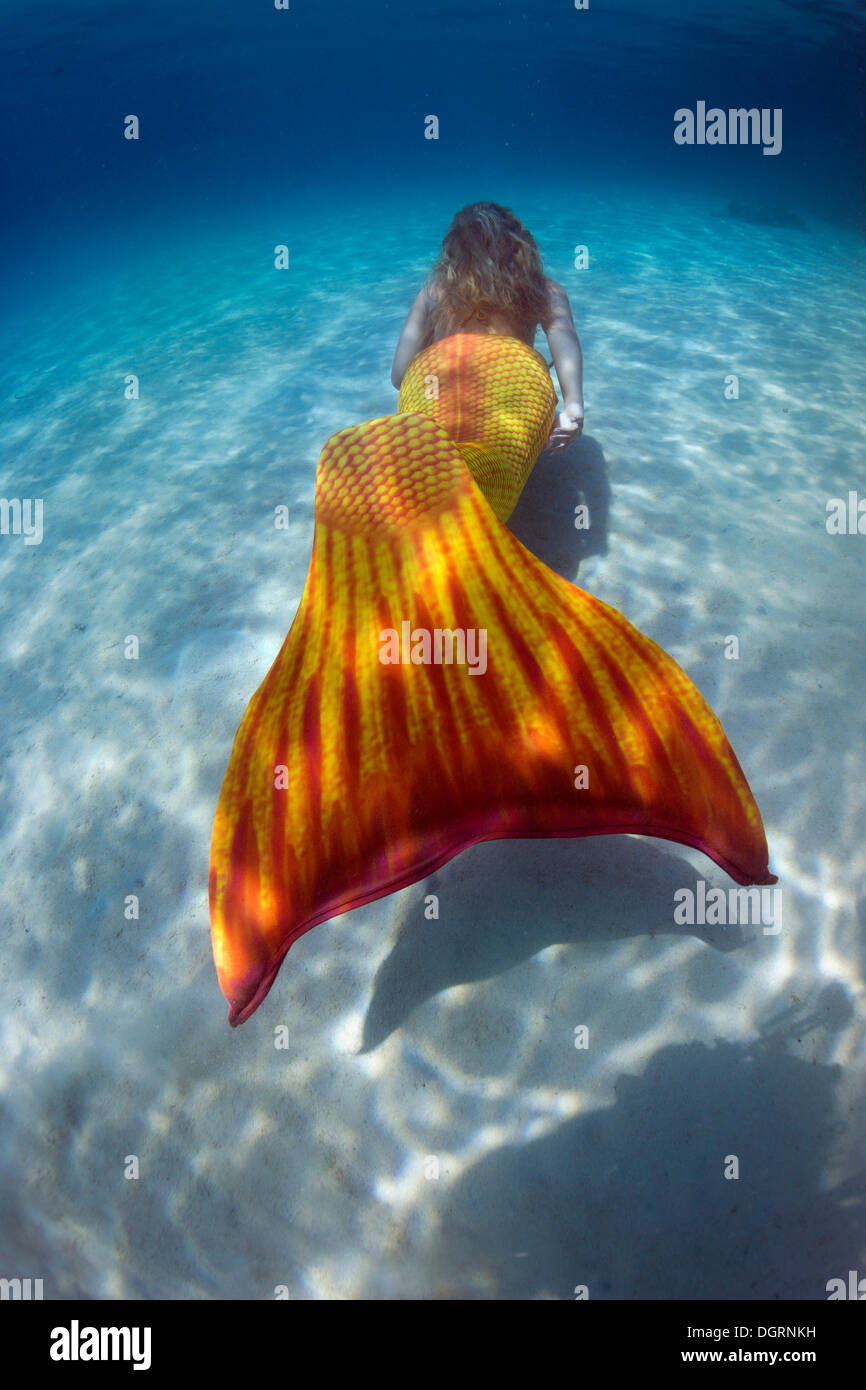 mermaid swimming in shallow water offshore underwater at cozumel