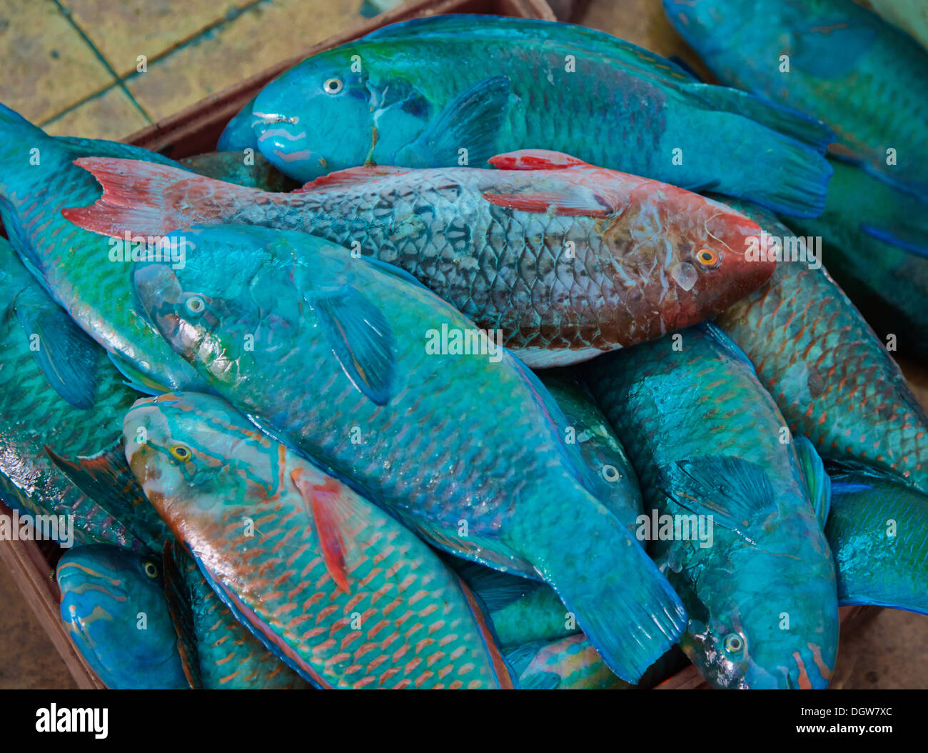 Stock exchange shares prices in kenya frudgereport363 for Fish stocking prices