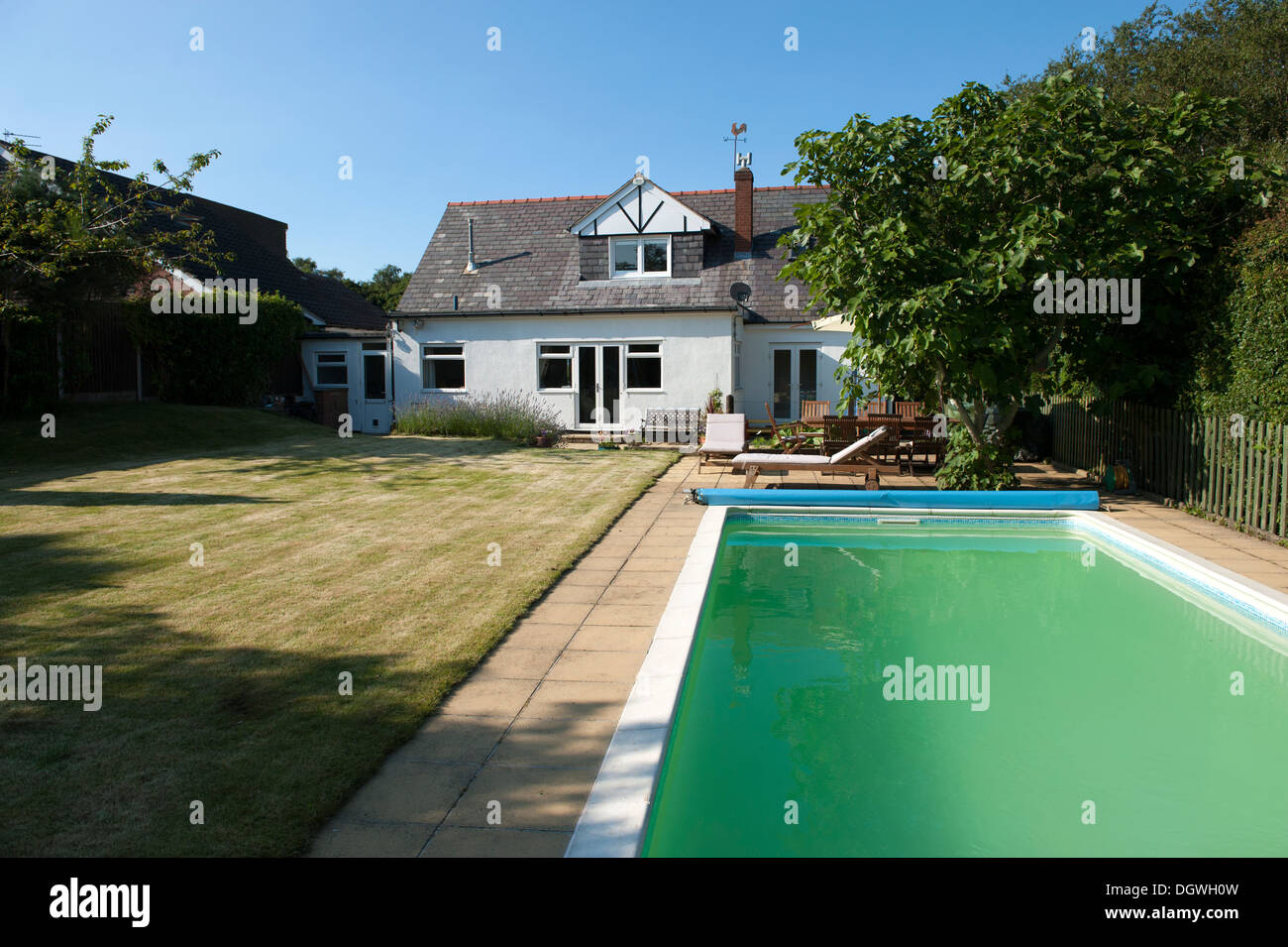House Garden Large Swimming Pool Green Algae Cloudy Water Stock Photo Royalty Free Image